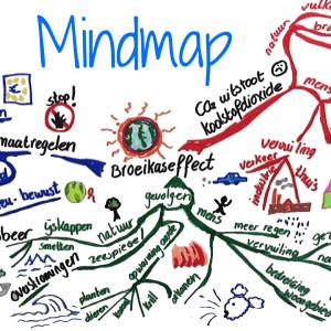 Mindmappen en Conceptmappen